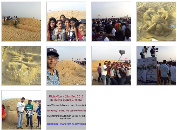 http://vjthamizharasan.com/videos-sand-sculpting-contest-to-save-turtles-at-marina-beach-07th-february-2016/