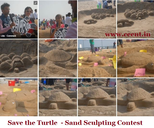 Save the Turtle Sand Sculpting Contest at Palavakkam Beach Coverage by Chennai Event Entertainers